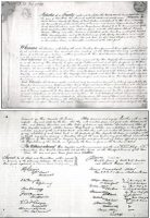 Other - Peace and Friendship Treaty